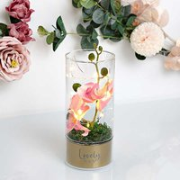 Peaches & Cream LED Tube Light with Orchid Flowers - Nan.