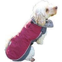 Rosewood Luxury Night-Bright LED Dog Jackets.
