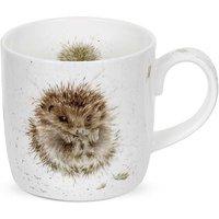 Royal Worcester Wrendale Designs Awakening Mug.