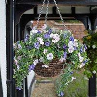 Artificial Hanging Basket - Petunia
