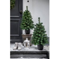 Imperial LED tree in a pot  battery  green 120 cm