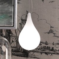 next Drop 2 XS Single pendant light with canopy