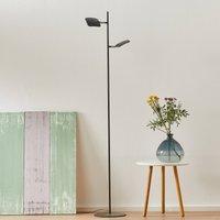 Raggio LED floor lamp  two bulb  black