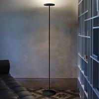 Joshua LED floor lamp in black