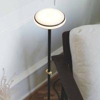 Shade  S1 floor lamp rings black base black Node