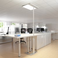Office floor lamp Linea F with sensor  grey