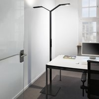 Luctra Floor Twin Linear LED floor lamp black