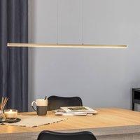 90 cm LED hanging light Ella  height adjustable