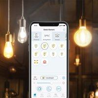 WiZ E27 LED G95 filament amber 6 5 W 2 000 4 500 K