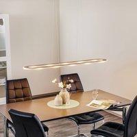 Elongated LED hanging light Sima