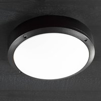 Desi 28   a ceiling light for outdoors