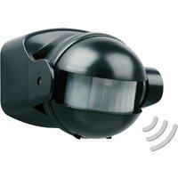 Snorre motion detector in black