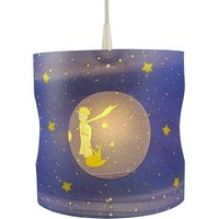 Prince children s hanging light  rotating
