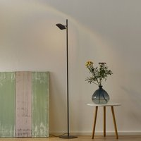 Raggio LED floor lamp  one bulb  black