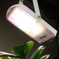 GoLeaf plant LED bulb 28 W S2 stem growth