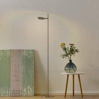 Raggio LED floor lamp  one bulb  steel coloured