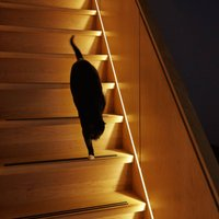 Innr Flex Light LED strip 4 m RGBW with LED driver