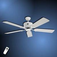 Simple ceiling fan Eco Elements white and grey