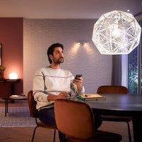 Philips Hue White Ambiance E27 LED bulb 8W 1100lm