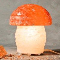 Wonderful MUSHROOM salt lamp with mushroom shape