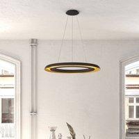 Shiitake LED hanging light  black gold