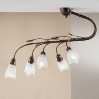 Campana ceiling light  five bulb  straight