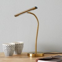 Flexible Curtis LED table lamp  antique brass