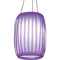 In lantern design   LED solar light Lilja purple
