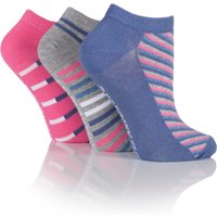 Jennifer Anderton Pack of 3 Stripe Trainer Socks