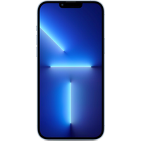 Apple iPhone 13 Pro Max 5G 1TB Gold