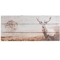 Product photograph showing Graham Brown Stag Wall Art On Fir Wood