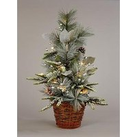 Product photograph showing Small Lit Christmas Tree