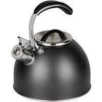 Product photograph showing Morphy Richards Accents 3-litre Whistling Stove Top Kettle - Titanium