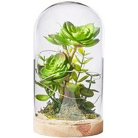 Product photograph showing Glass Tube Artificial Plant With Led Lights