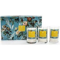 Product photograph showing Oasis Home Leighton Freesia And Musk 3 Candle Gift Set