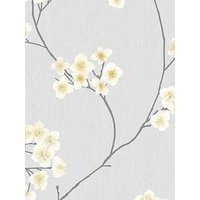 Product photograph showing Superfresco Easy Radiance Wallpaper