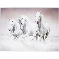 Product photograph showing Graham Brown Galloping Waves Canvas