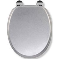 Product photograph showing Croydex Silver Quartz Flexi-fix Toilet Seat