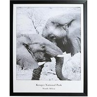 Product photograph showing Arthouse Monochrome Elephant Framed Print