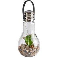 Product photograph showing Solar Succulent Jar