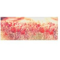 Product photograph showing Graham Brown Peaceful Poppy Fields Canvas