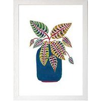 Product photograph showing East End Prints Prayer Plant By Amber Davenport A3 Framed Print