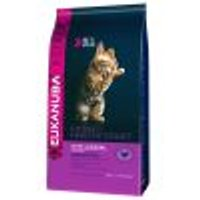 Eukanuba Kitten Healthy Start Set %: 2 x 4 kg