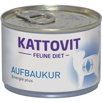 Kattovit Convalescence (Energy Plus) - 6 x 175g