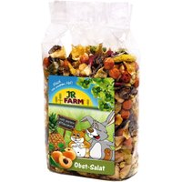 JR Farm Fruit Salad - 500g