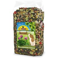 JR Farm Guinea Pig Food Feast - Economy Pack: 2 x 2.5kg