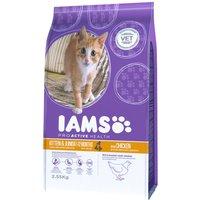 Iams Proactive Health Kitten & Junior Chicken Dry Food - 10kg