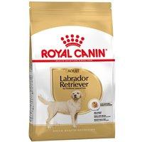 12kg Labrador Retriever Adult Royal Canin - Croquettes pour chien