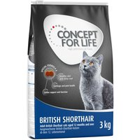 Concept for Life British Shorthair Adult - 400g