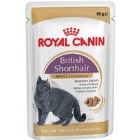 Royal Canin Breed British Shorthair - 12 x 85g